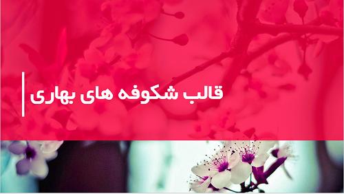 قالب-پاورپوینت-شکوفه های-بهاری