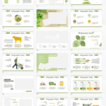قالب- پاورپوینت- مواد غذایی-ارگانیک