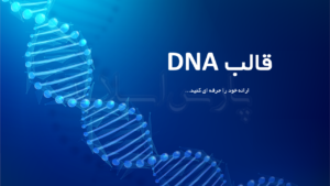 قالب-پاورپوینت-DNA