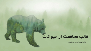قالب- پاورپوینت- محافظت- از- حیوانات